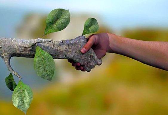 Ecologia-e-sustentabilidade