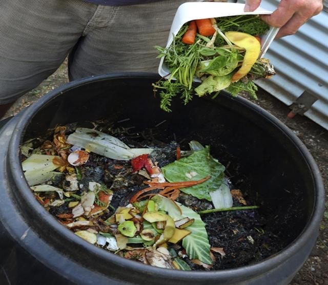 A compostagem não deve sofrer ação direta do sol.