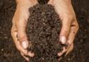 Aprenda a fazer compostagem sem sair de casa