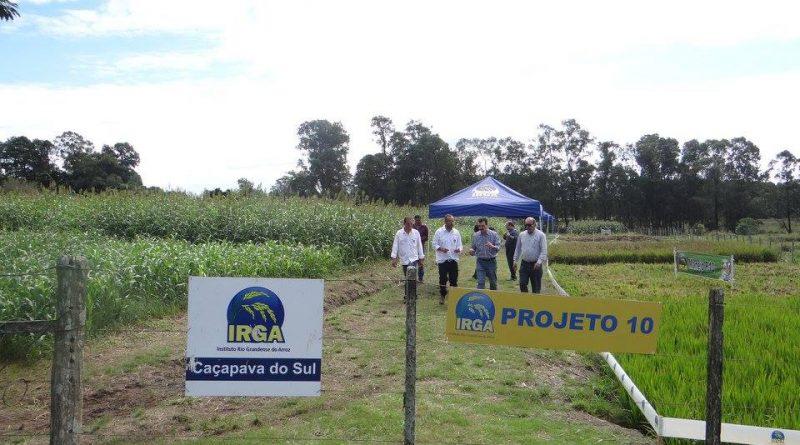 Irga e Eterrg organizam dia de campo em Caçapava do Sul