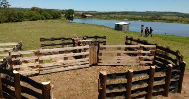 Curral sustentável é destaque no Rio Grande do Sul