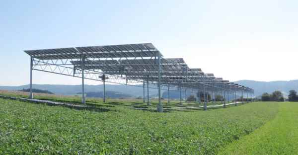 Agricultura com painéis solares pode aumentar a produtividade em mais de 60%